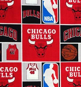 NBA Chicago Bulls