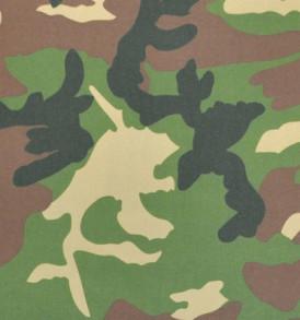 SUNP0001 Army