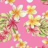 CAA0350_Pink_ZZ