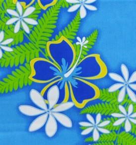 PAA1068 Blue
