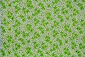 CAA0735_Green
