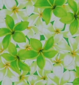 CAA0735 Green