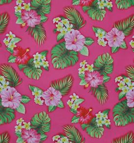 CAA0736_Pink
