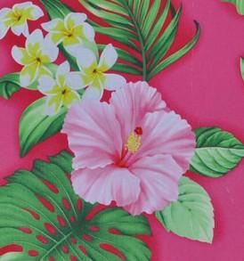 CAA0736 Pink