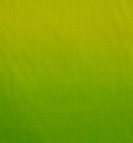 PAA1089 Green