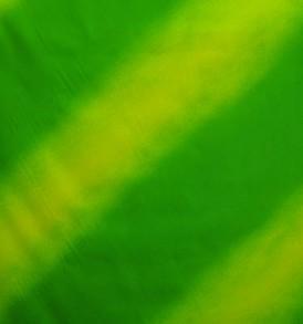 PBC0598_Green