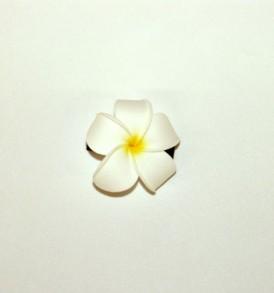 S2SPTOC11 White