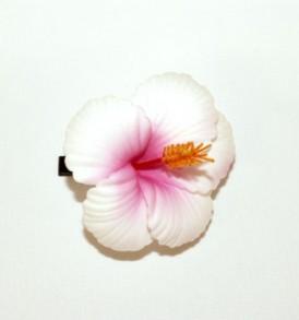 SHTAC1 White Pink