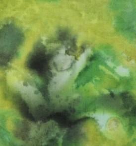 BT0123 Green