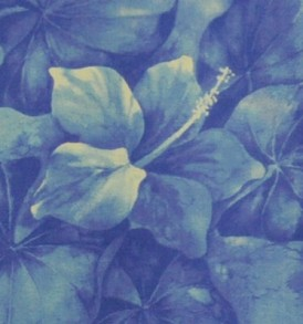 PAA1117 Blue/Light Blue
