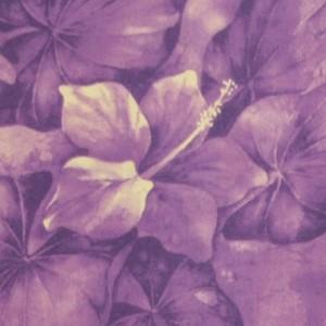PAA1117_PurpleLila_z