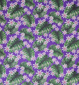 PAA1136_Purple