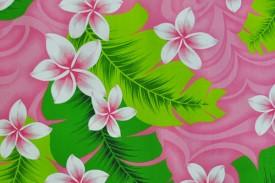 PAA1138 Pink