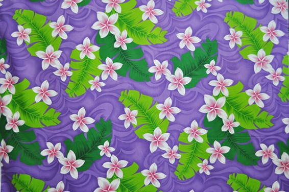 PAA1138_Purple