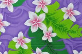 PAA1138 Purple