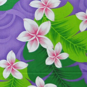 PAA1138_Purple_Z