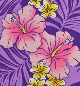 PBA1260 Purple
