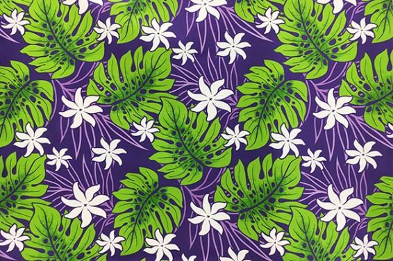 PAA1147_Purple