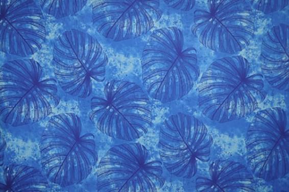 PAA1149_BLUE