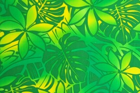 HR1461 Green