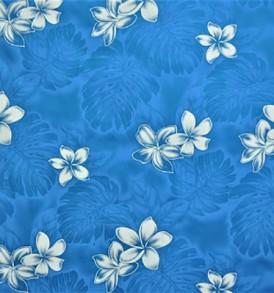 PAA1156_Blue