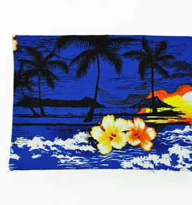 Canvas Coin Purse – Large Waikiki Sunset