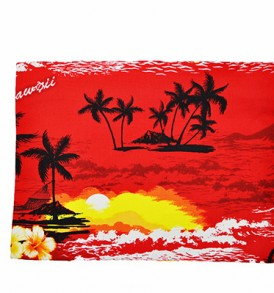 Canvas Zipper Pouch – Large Waikiki Sunset Red