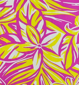 PAA1176 Fuchsia Yellow