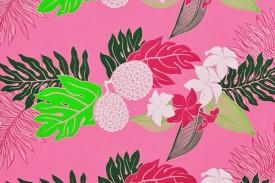 PAA1183 Pink