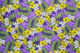 PAA1184_Purple