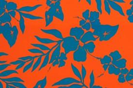 PAA1185 Orange Blue