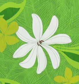 PAA1193 Lime