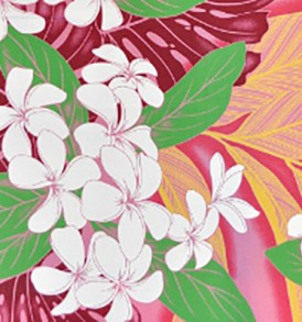 PBB1947 Pink