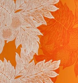 PBB1953 Orange