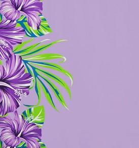 PBB2595_Purple