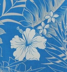 PAA1200 Turquoise