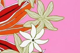 PBB2604 Pink
