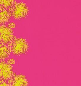 PBB2606_YellowPink