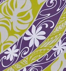 PBC0530 Purple