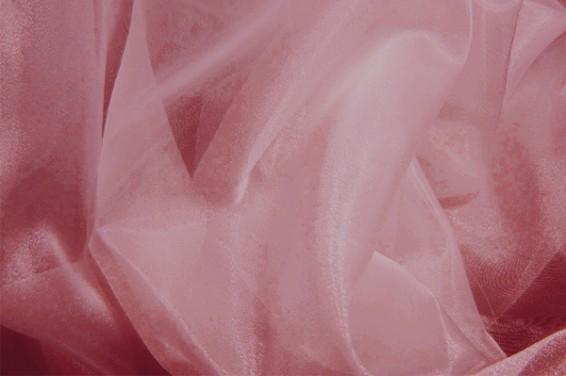 COR0009_Rose