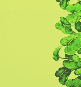 PBB2607_Green
