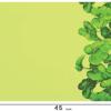 PBB2607_Green_1