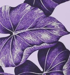PBB2607 Purple