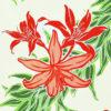 PBC0614_Natural_ZZ