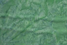 BT0141 Green