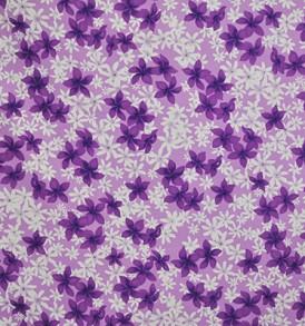 CAA0815_Purple