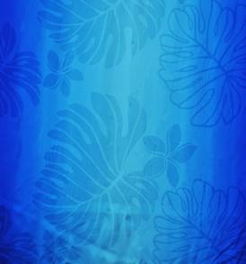 HR1473_Blue