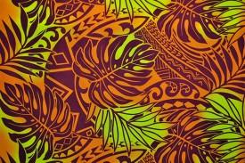 PAA1218_Orange