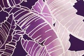 PAA1227 Purple