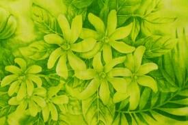 PAA1229 Lime